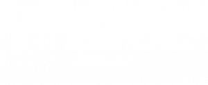 logo-integral-group-footer